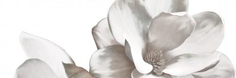 Dekoorikomplekt Cavan calacatta (lill) 2 x 20x60 - Hansas Plaadimaailm