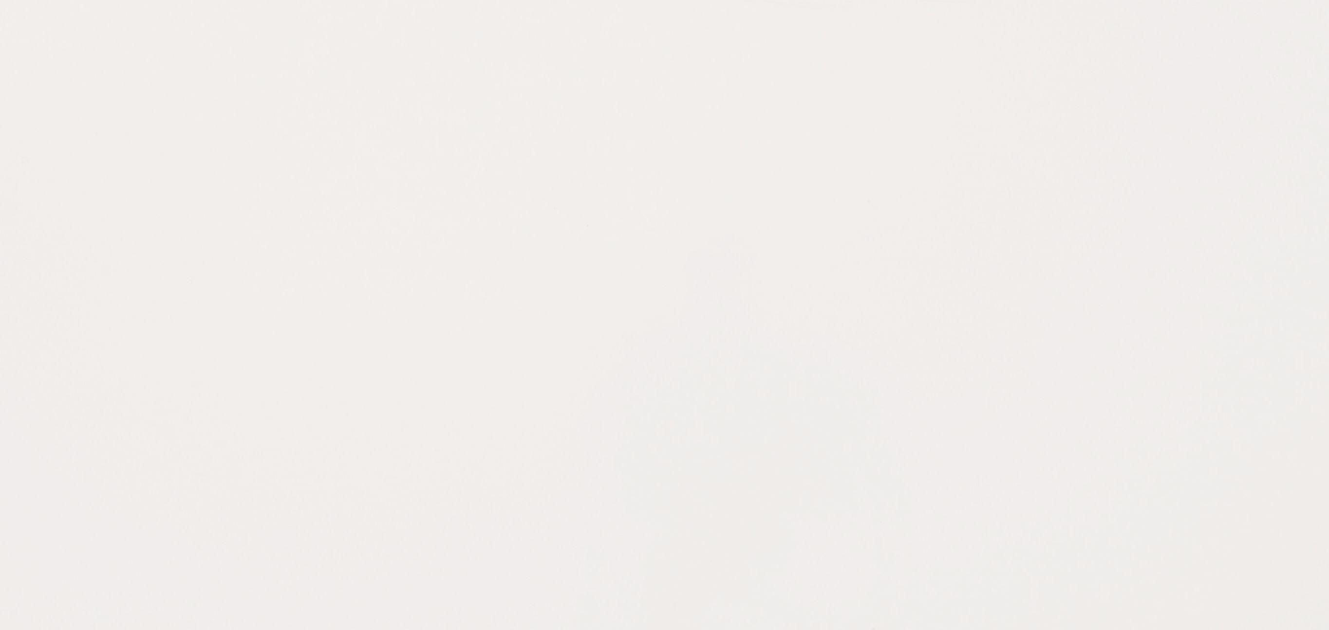 White mat WAKV4104 rect 30x60 II sort - Hansas Plaadimaailm
